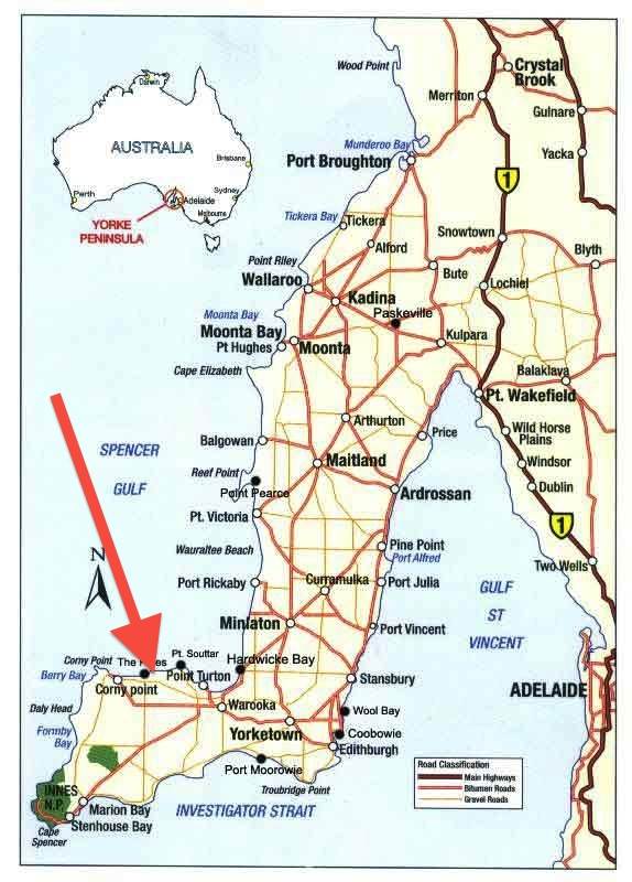 Fishing-Trips-South-Australia copy
