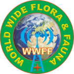 Logo WWFF 9xa1_2a copy