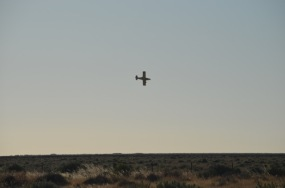 Cropduster at work on the Hay Plain