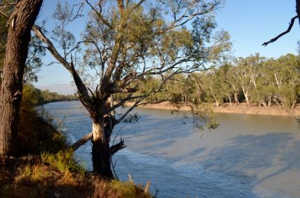 The Murray River not far from the park
