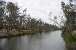 The Wimmera River at Dimboola