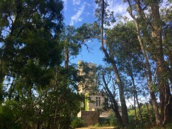 Carminow Castle