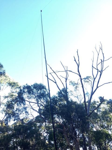 20m/40m linked dipole on 7m squid pole
