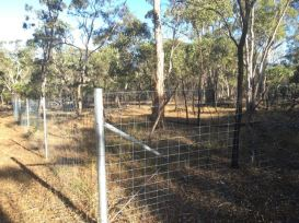 Fenced off area within the park