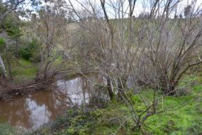 The Torrens River at Cudlee Creek