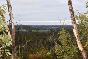 Looking out towards Mount Barker and Littlehampton