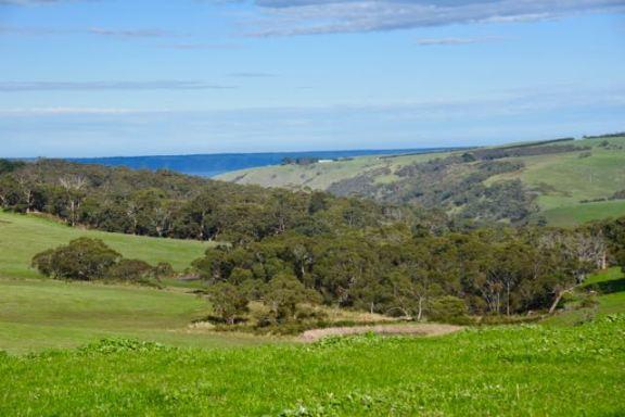 Looking out towards Kangaroo Island