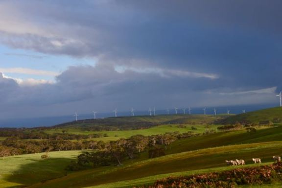 Starfish Hill windfarm