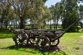 Old German wagon at Langhorne Creek