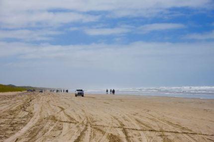 Goolwa Beach, looking east