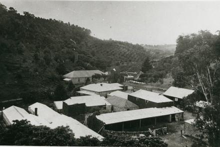The nursery, c. 1880