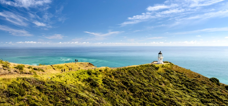 backpacker-bus-cape-reinga.jpg