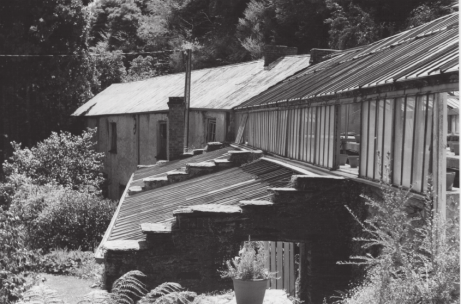 Giles's Grove Hill Nursery, showing the fernery, glasshouse, and cellar
