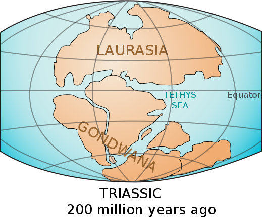 519px-Laurasia-Gondwana.svg.png