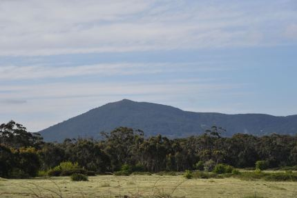 Mt Tarrengower near Maldon, a SOTA summit
