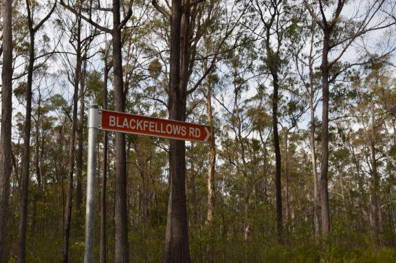 The turnoff at Blackfellows Road