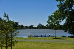 Lake Weeroona