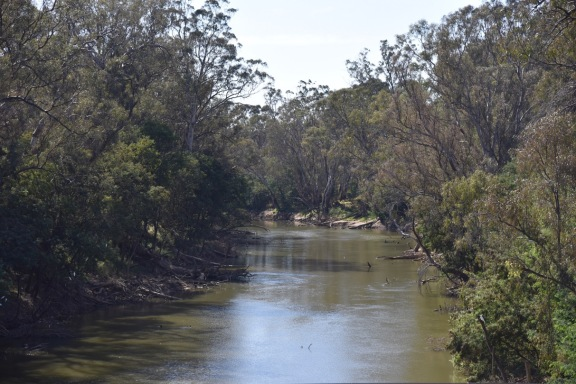 The Goulburn River at Murchison