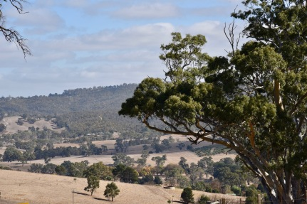 Looking west towards Mount Gawler