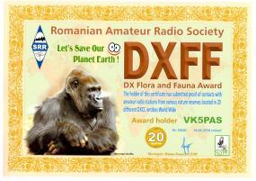 DXFF 20
